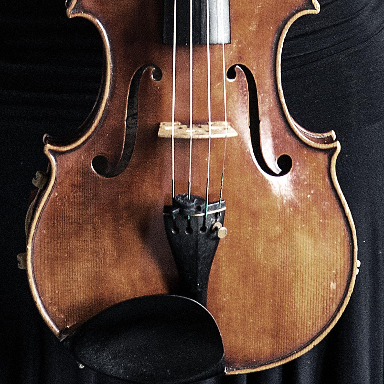 Dettaglio del violino